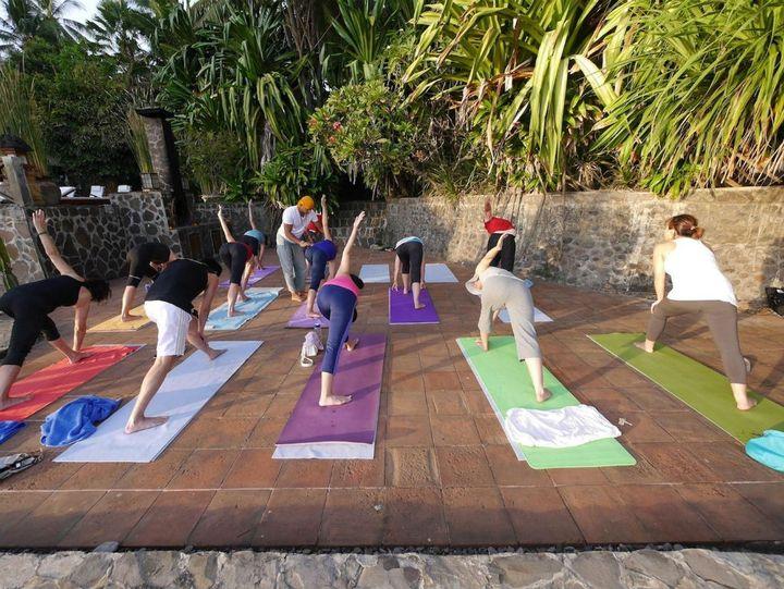 Om Shiva Yoga Chip Bee Gardens